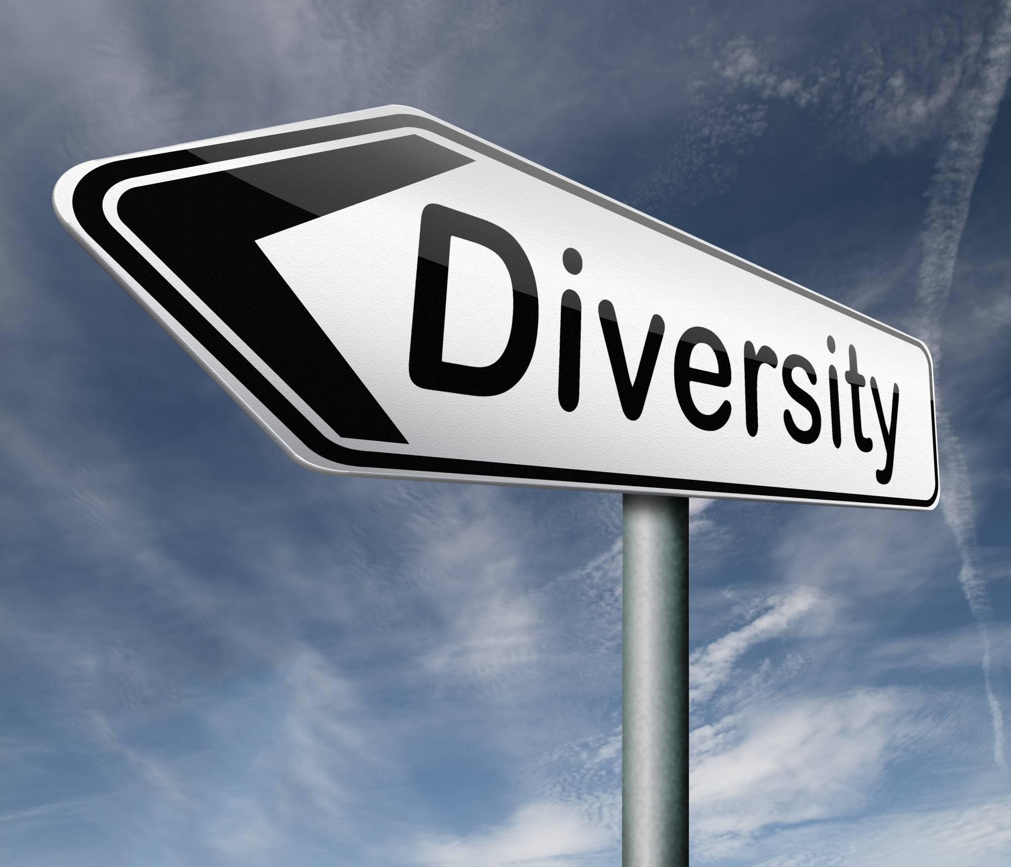 La diversité culturelle sur les projets
